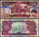 Somaliland - 1000 SHILLINGS 2015